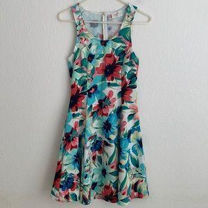 Everly Sleeveless Fit & Flare Dress